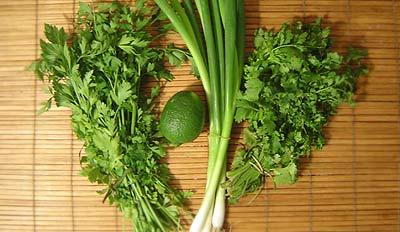 Platte peterselie, limoen, bosui en koriander - &copy, La Cucina